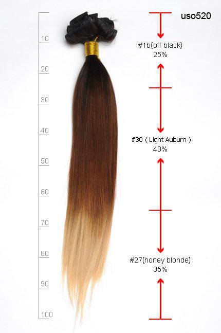 Three colors ombre clip in hair extensions m1b3027 m1b3027 what is your most wanted hair extension pmusecretfo Image collections