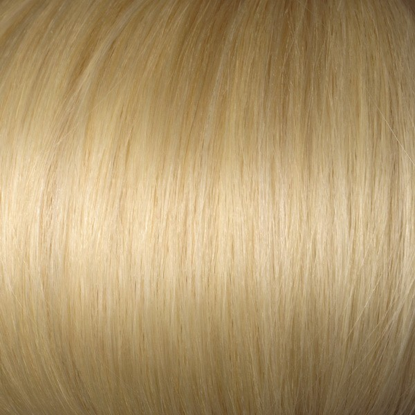 Honey Blonde Solid Clip In Indian Remy Hair Extensions S27